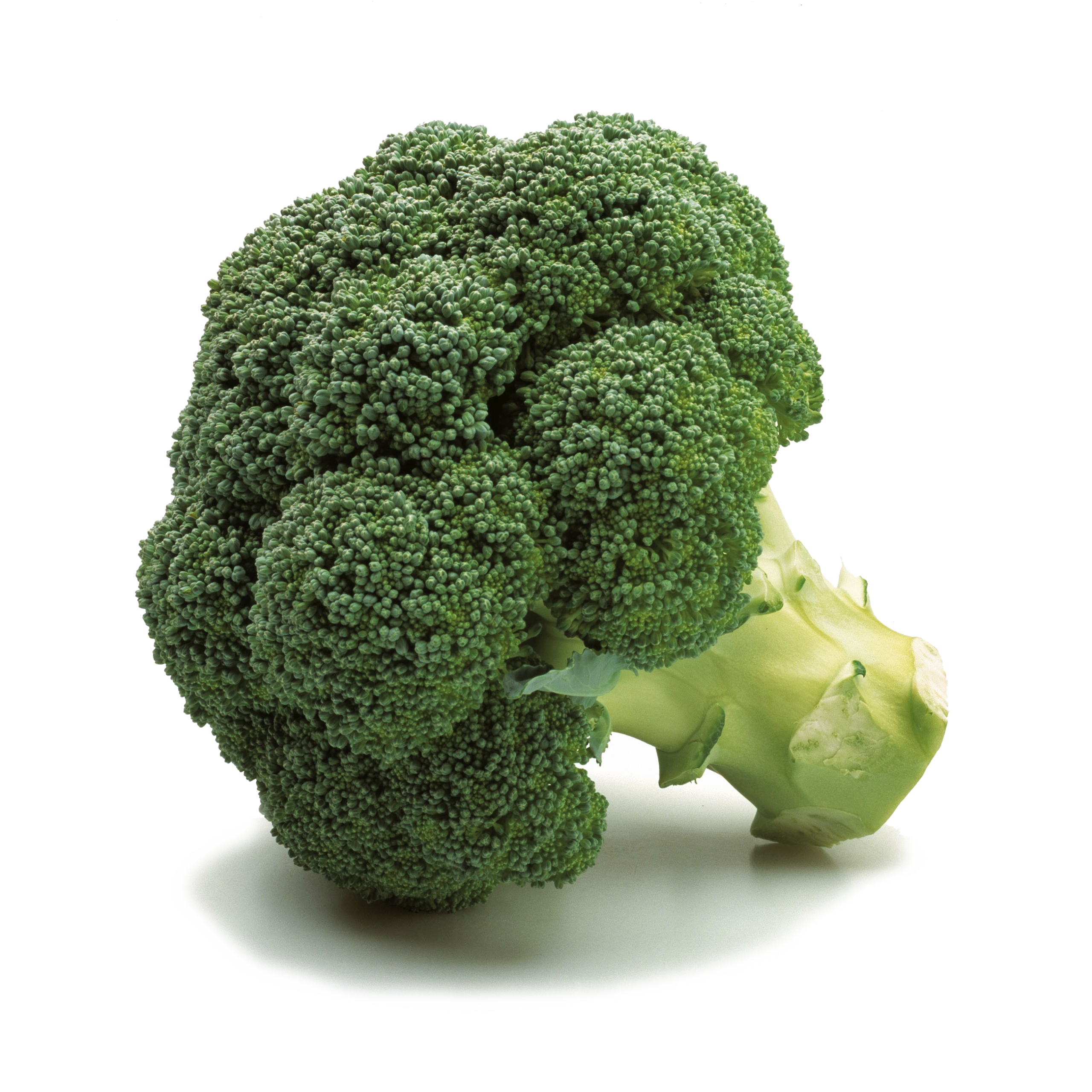 broccoli2_PID